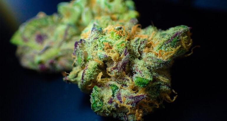 marijuana e infetilità
