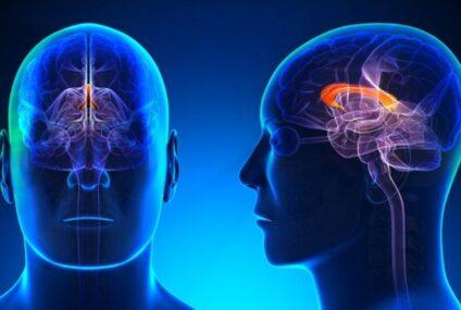 Federico II, intervento innovativo  per la stimolazione cerebrale profonda