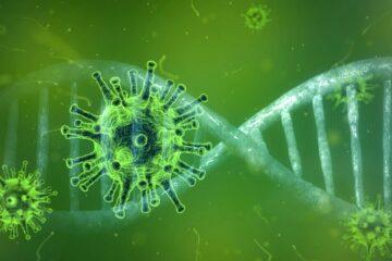 Virus influenzali o Covid 19  L'immunità protegge dei tumori
